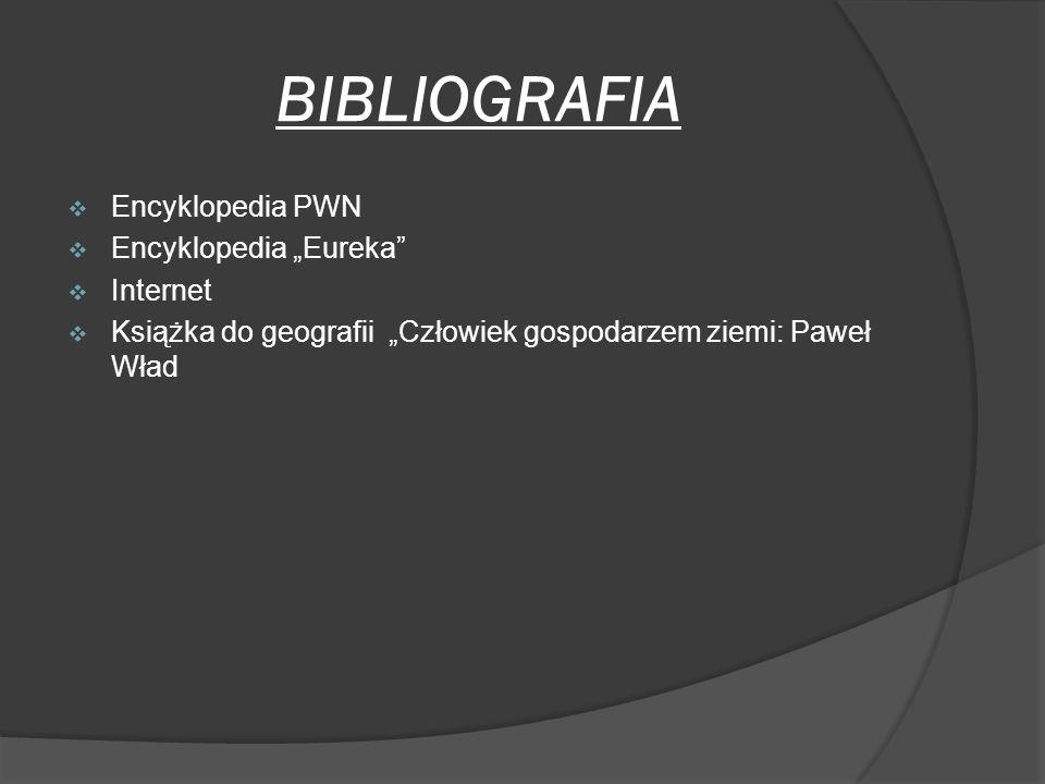 "BIBLIOGRAFIA Encyklopedia PWN Encyklopedia ""Eureka Internet"