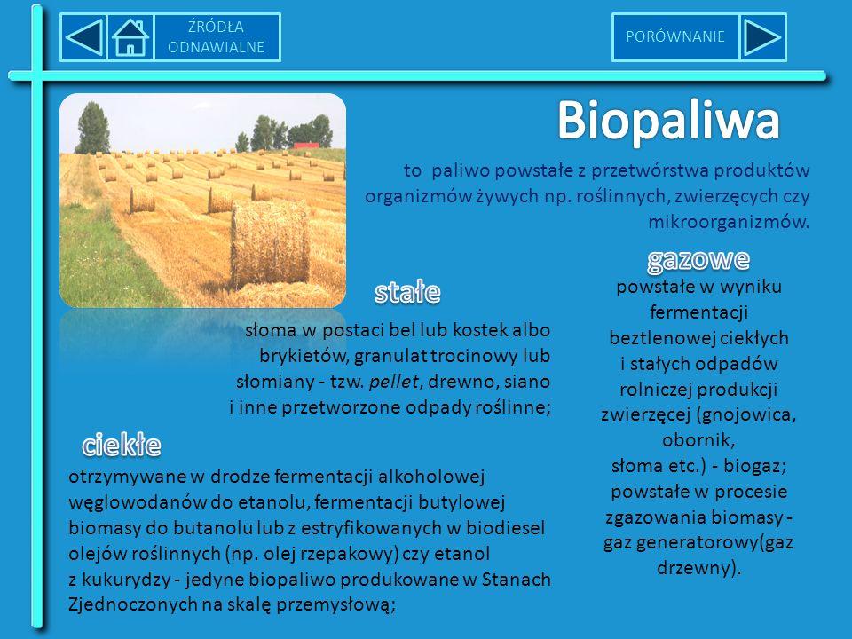 Biopaliwa gazowe stałe ciekłe