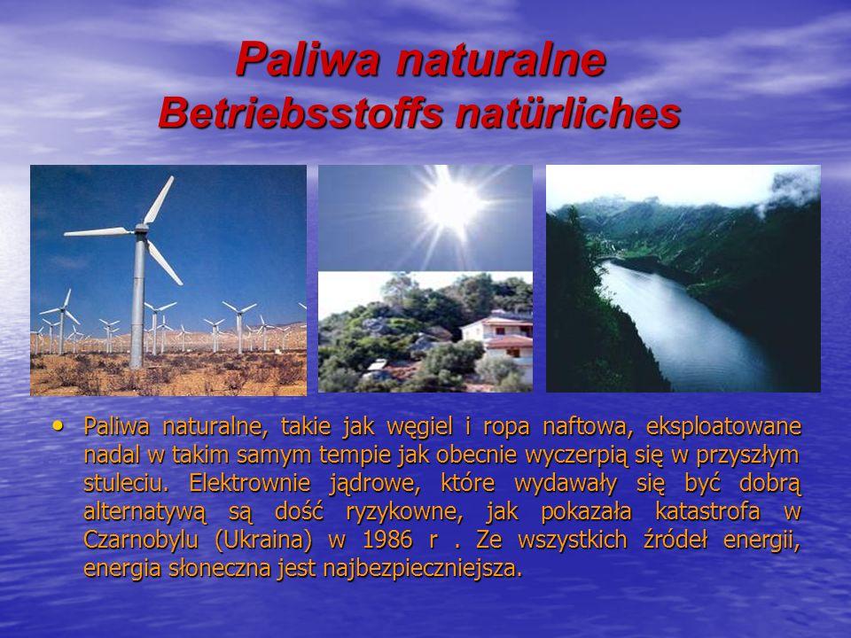 Paliwa naturalne Betriebsstoffs natürliches