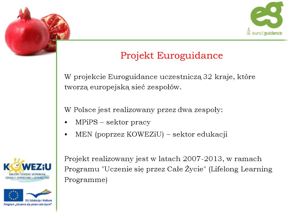 Projekt Euroguidance W projekcie Euroguidance uczestniczą 32 kraje, które tworzą europejską sieć zespołów.