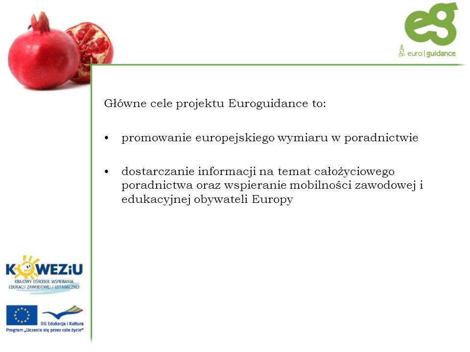 Główne cele projektu Euroguidance to: