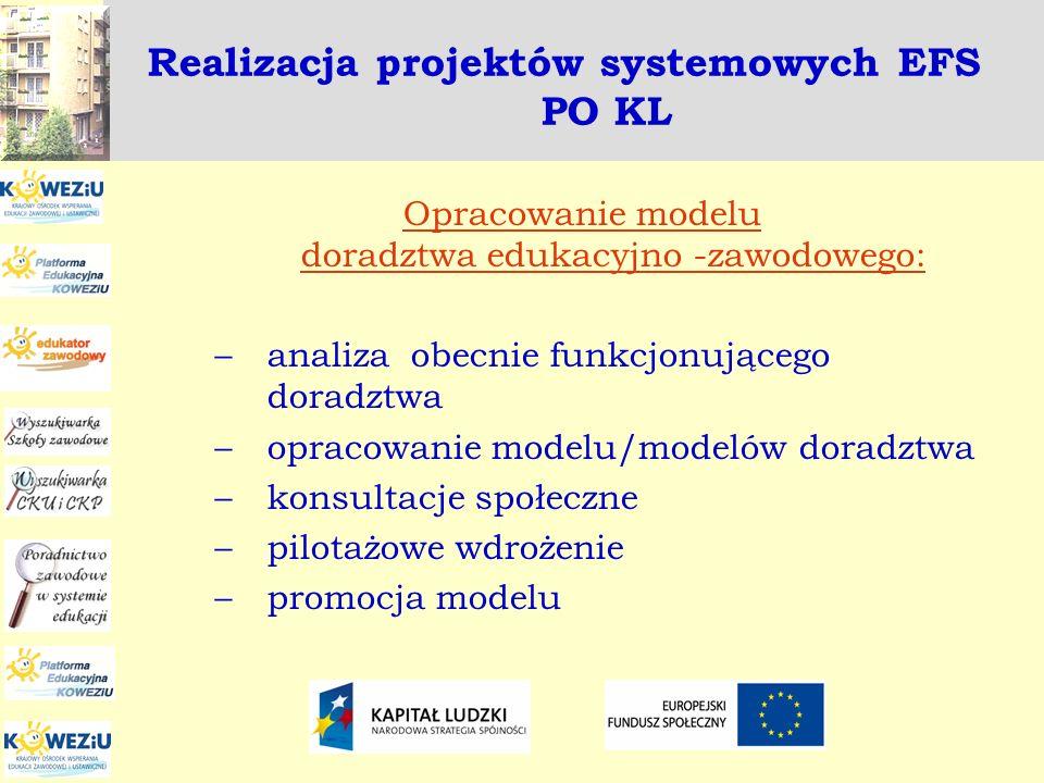 Realizacja projektów systemowych EFS PO KL