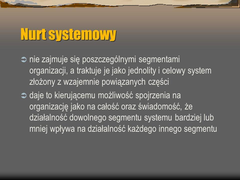 Nurt systemowy