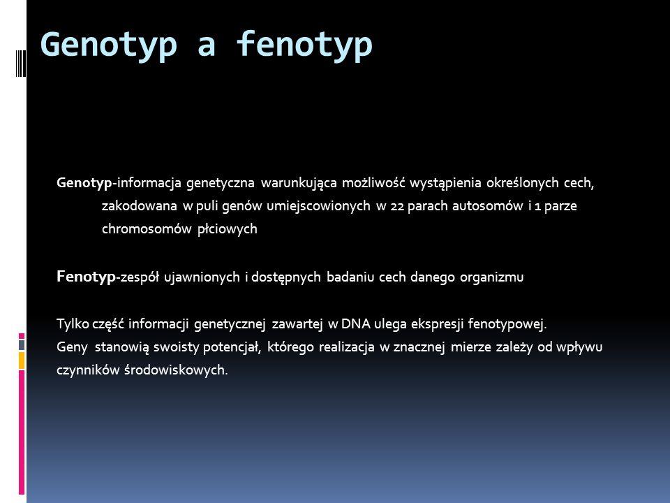 Genotyp a fenotyp Genotyp-informacja genetyczna warunkująca możliwość wystąpienia określonych cech,