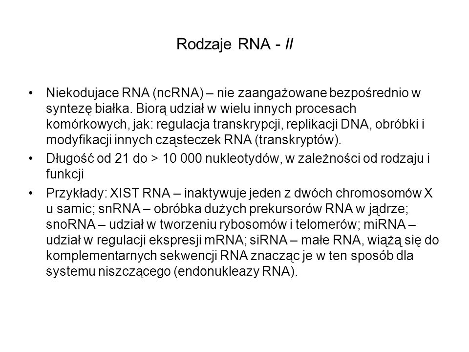 Rodzaje RNA - II