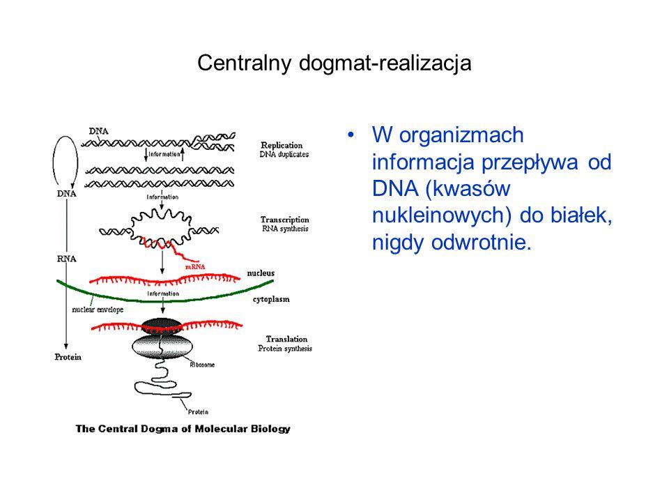 Centralny dogmat-realizacja