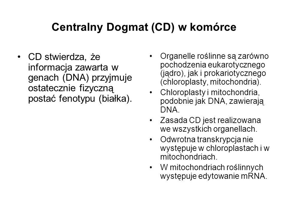 Centralny Dogmat (CD) w komórce
