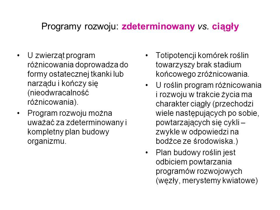 Programy rozwoju: zdeterminowany vs. ciągły