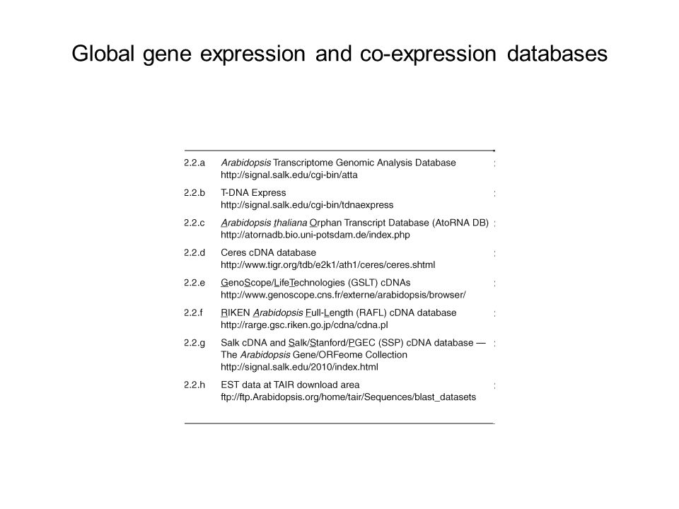 Global gene expression and co-expression databases