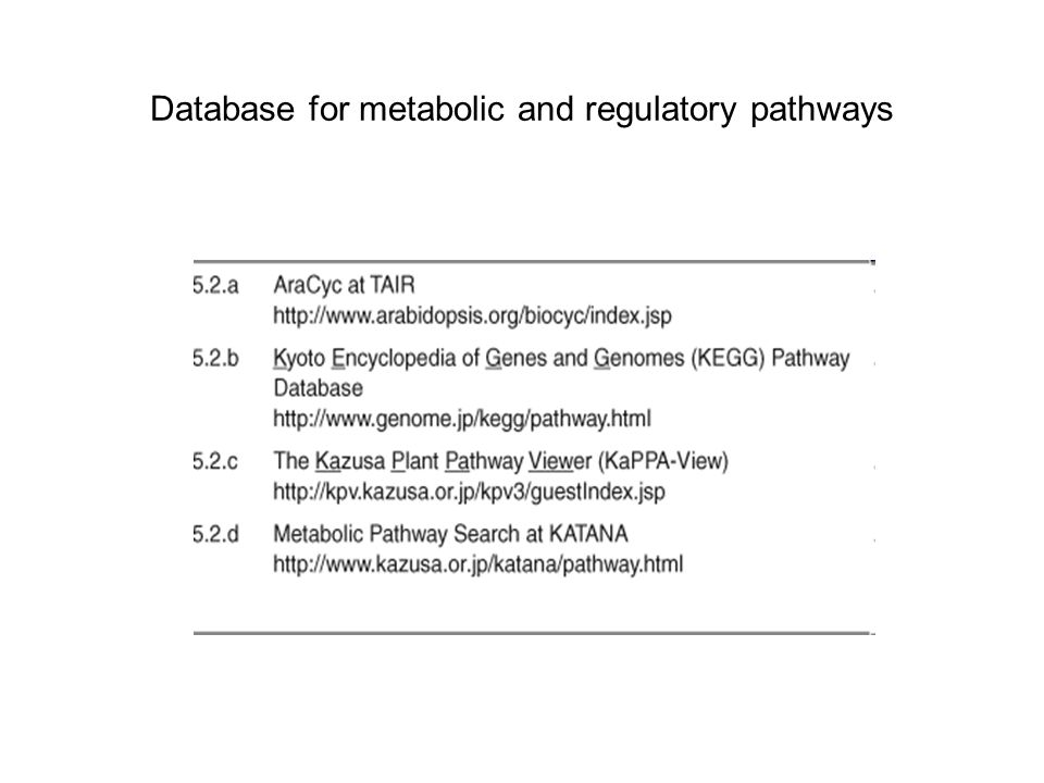 Database for metabolic and regulatory pathways