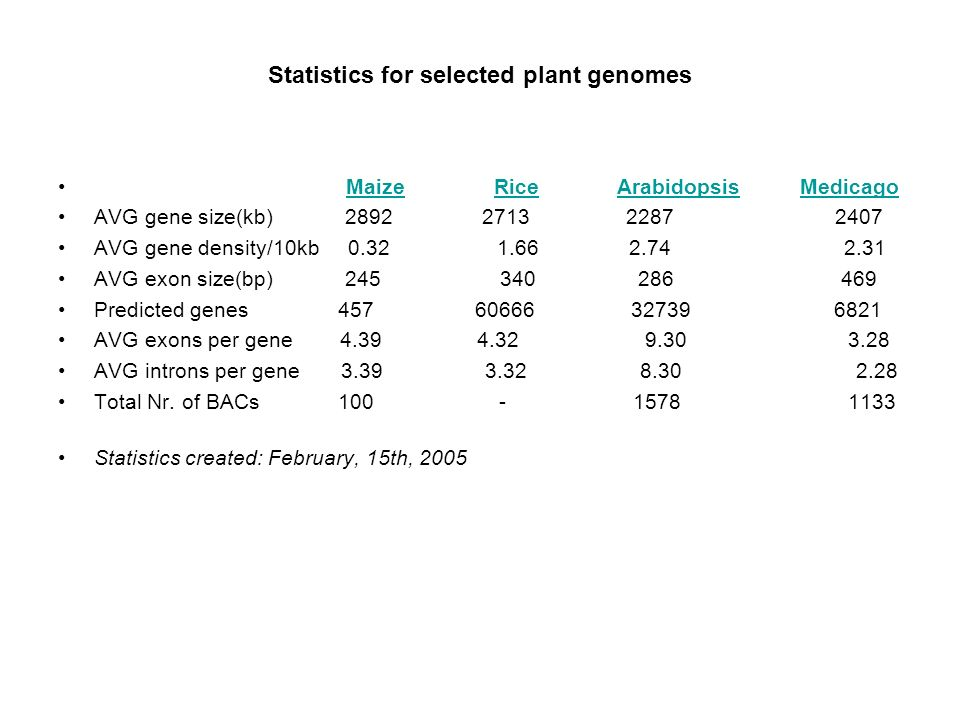 Statistics for selected plant genomes