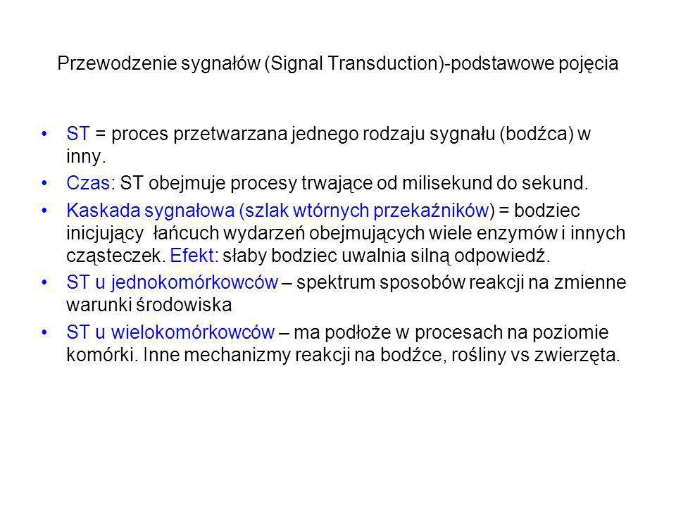Przewodzenie sygnałów (Signal Transduction)-podstawowe pojęcia