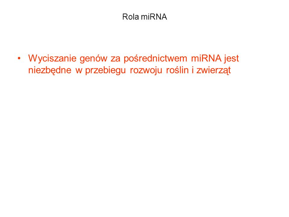 Rola miRNA Wyciszanie genów za pośrednictwem miRNA jest niezbędne w przebiegu rozwoju roślin i zwierząt.