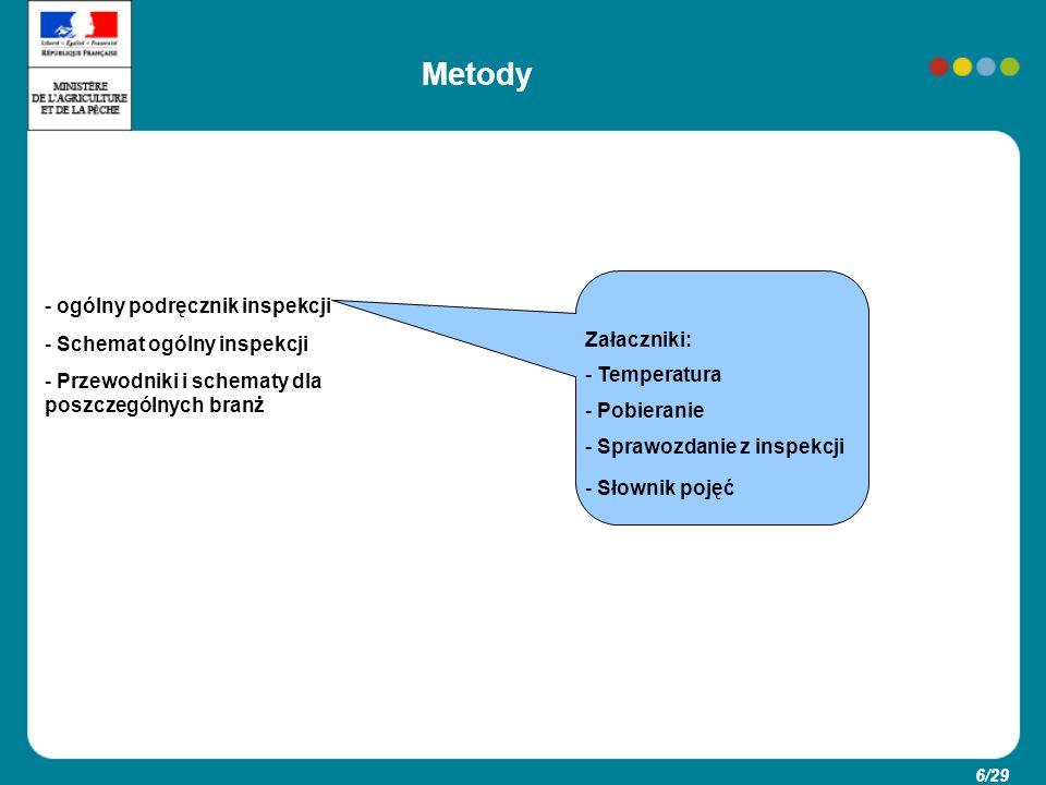 Metody ogólny podręcznik inspekcji Schemat ogólny inspekcji