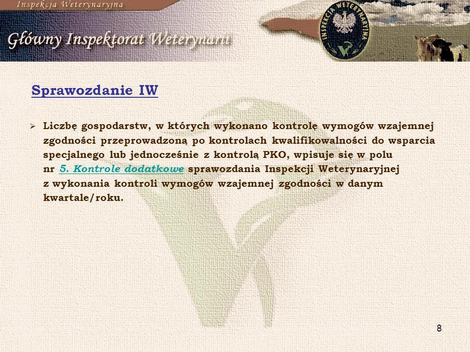 Sprawozdanie IW