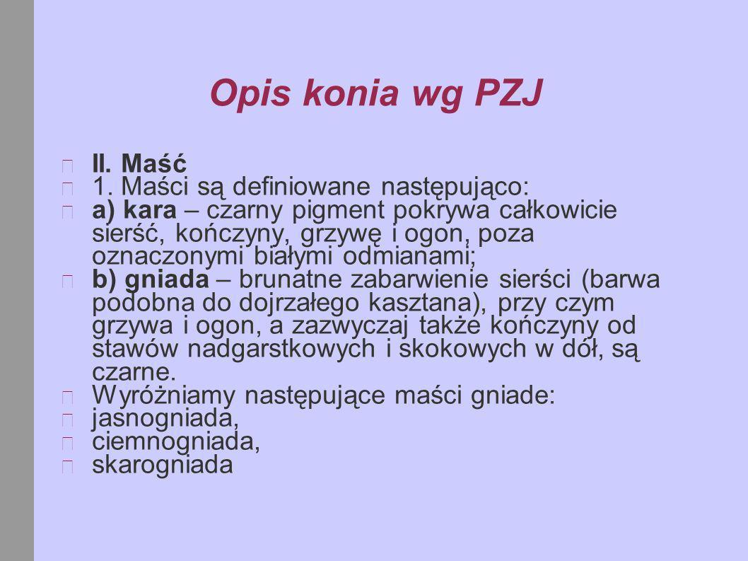 Opis konia wg PZJ II. Maść 1. Maści są definiowane następująco:
