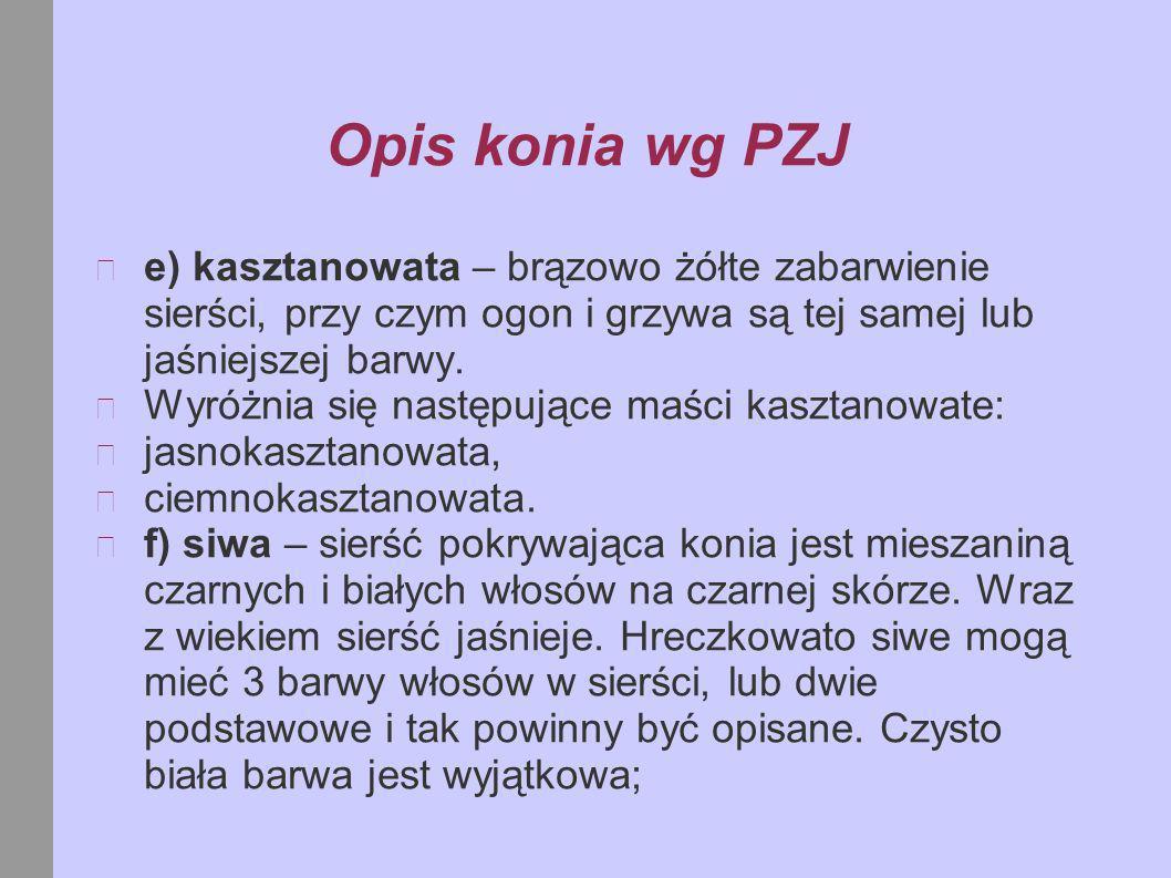 Opis konia wg PZJ e) kasztanowata – brązowo żółte zabarwienie sierści, przy czym ogon i grzywa są tej samej lub jaśniejszej barwy.