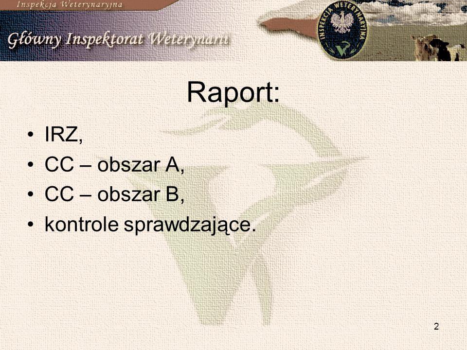 Raport: IRZ, CC – obszar A, CC – obszar B, kontrole sprawdzające.