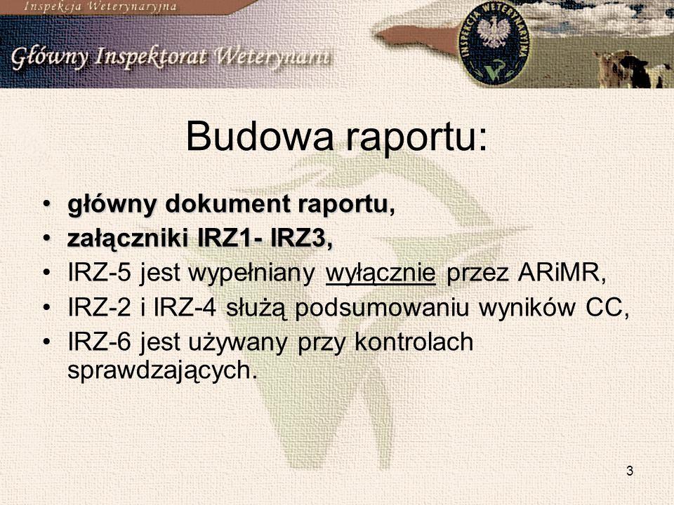 Budowa raportu: główny dokument raportu, załączniki IRZ1- IRZ3,