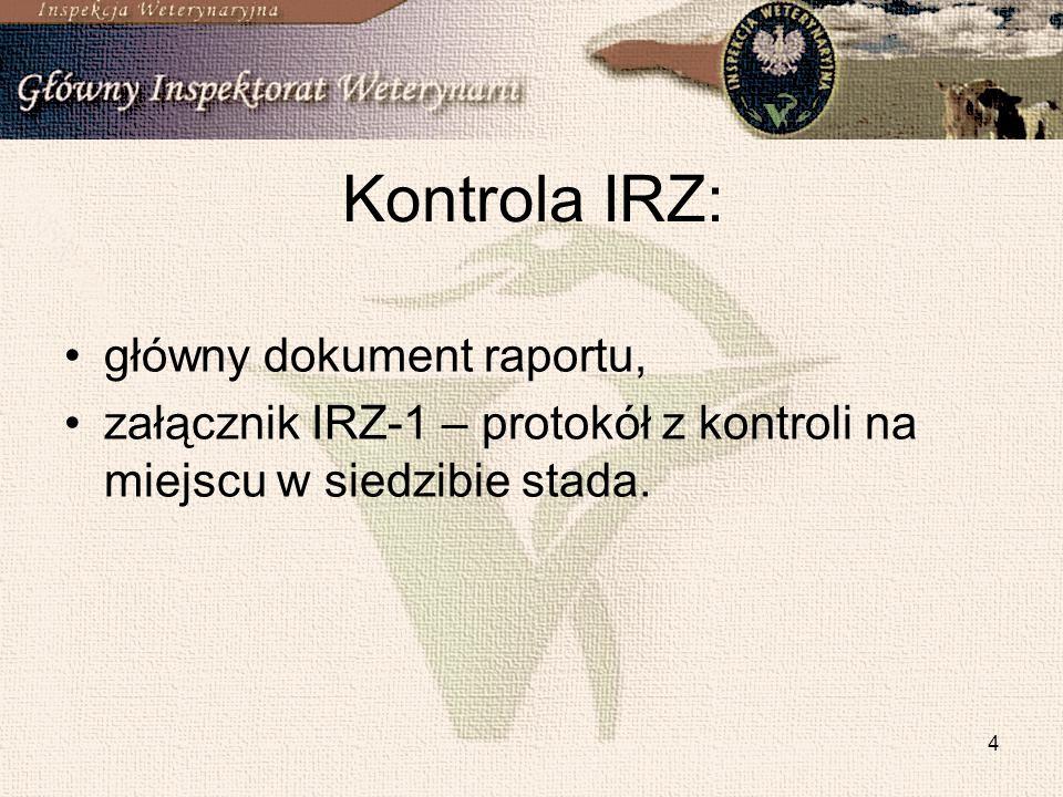 Kontrola IRZ: główny dokument raportu,
