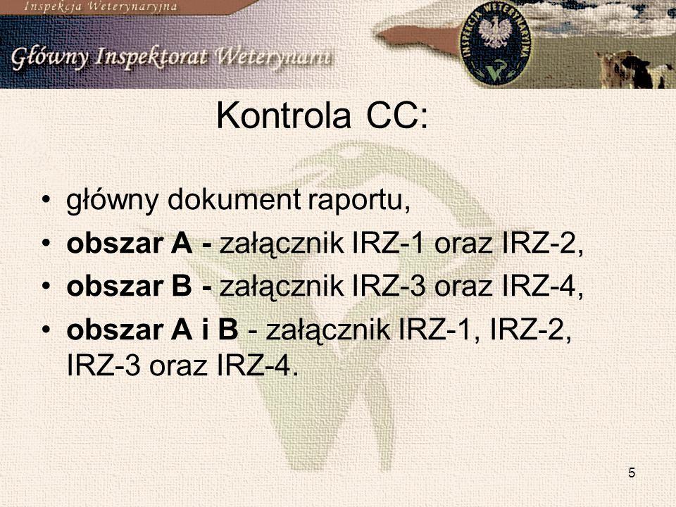 Kontrola CC: główny dokument raportu,