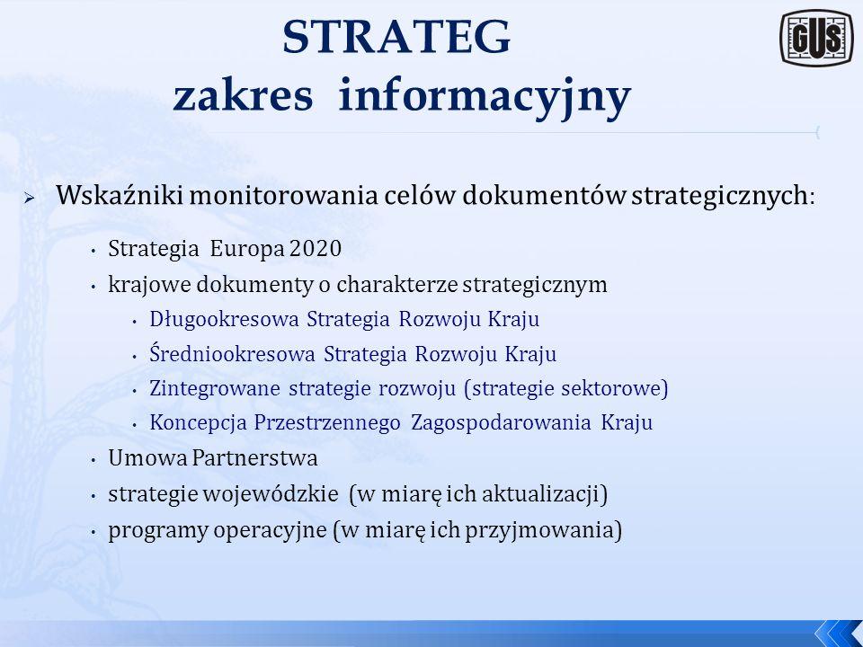 STRATEG zakres informacyjny