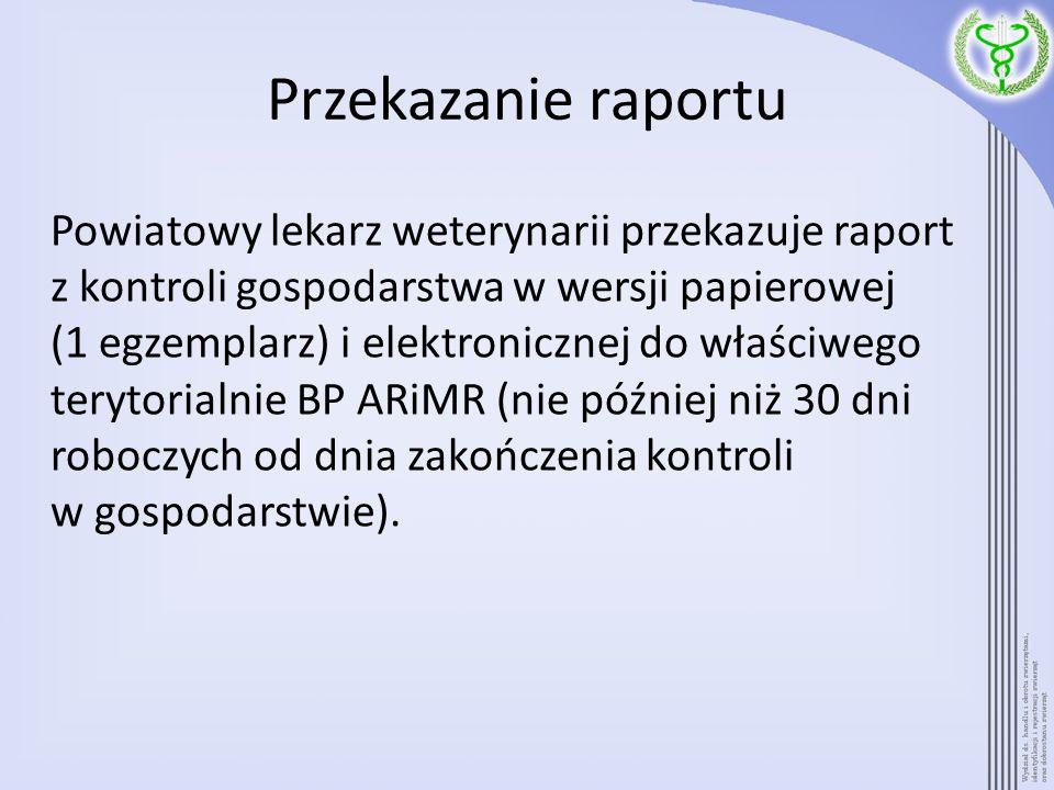 Przekazanie raportu