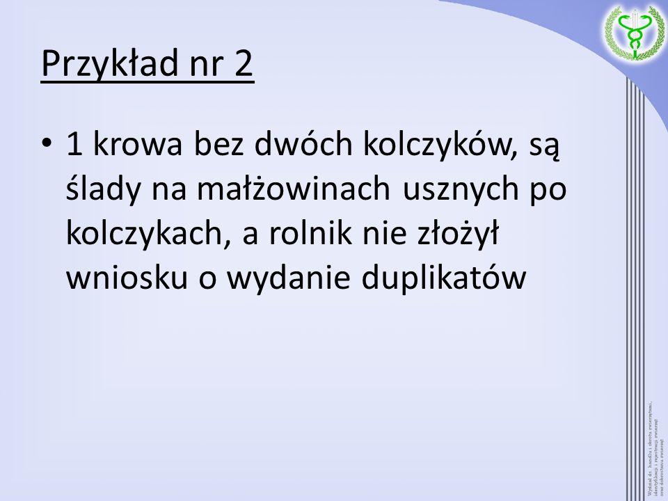 Przykład nr 2 1 krowa bez dwóch kolczyków, są ślady na małżowinach usznych po kolczykach, a rolnik nie złożył wniosku o wydanie duplikatów.