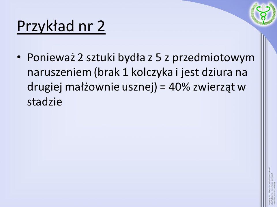 Przykład nr 2