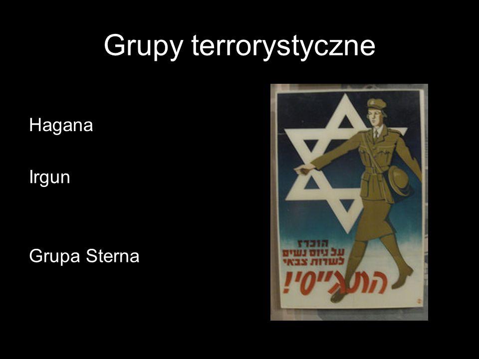Grupy terrorystyczne Hagana Irgun Grupa Sterna