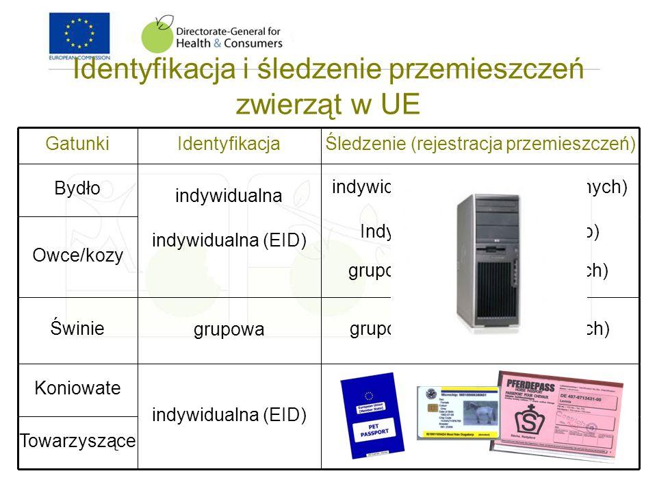 Identyfikacja i śledzenie przemieszczeń zwierząt w UE
