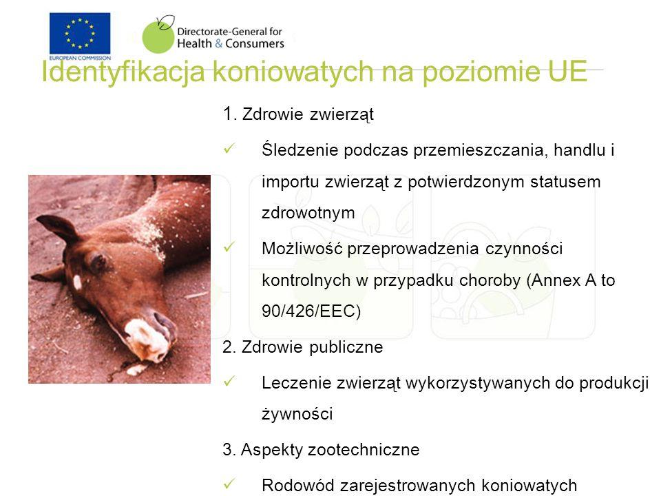 Identyfikacja koniowatych na poziomie UE