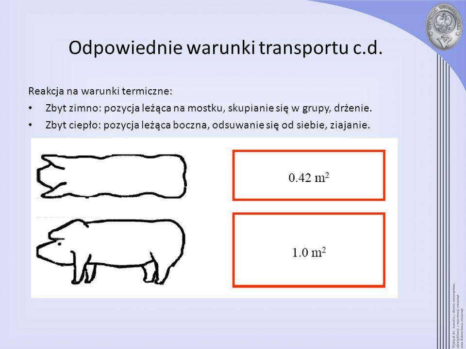 Odpowiednie warunki transportu c.d.