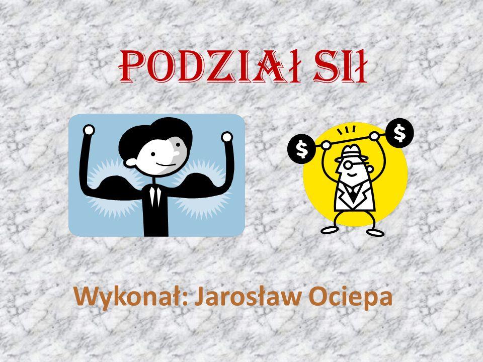 Wykonał: Jarosław Ociepa