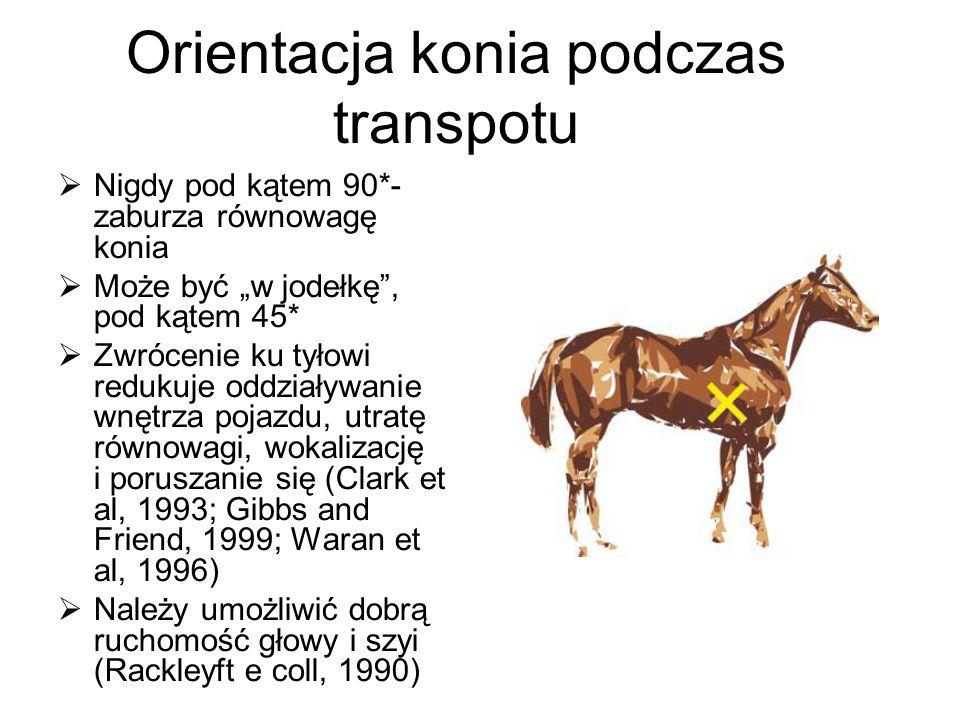 Orientacja konia podczas transpotu