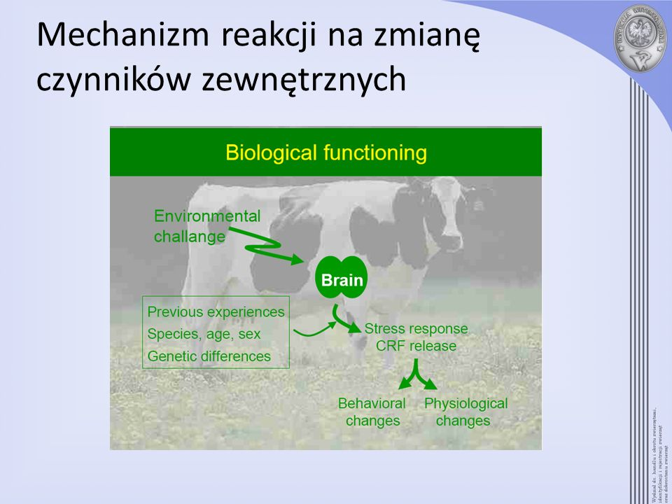 Mechanizm reakcji na zmianę czynników zewnętrznych