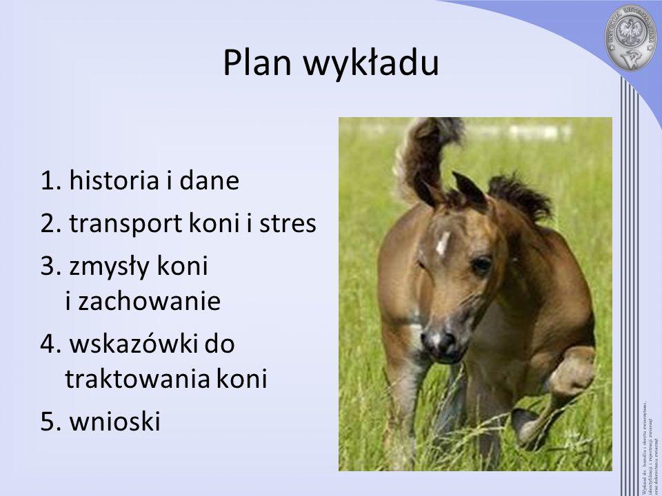 Plan wykładu 1. historia i dane 2. transport koni i stres