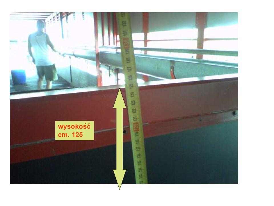 wysokość cm. 125