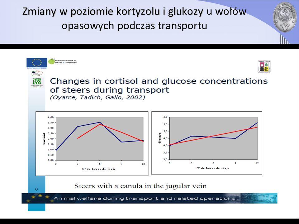 Zmiany w poziomie kortyzolu i glukozy u wołów opasowych podczas transportu