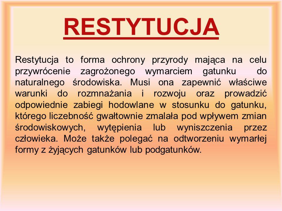 RESTYTUCJA