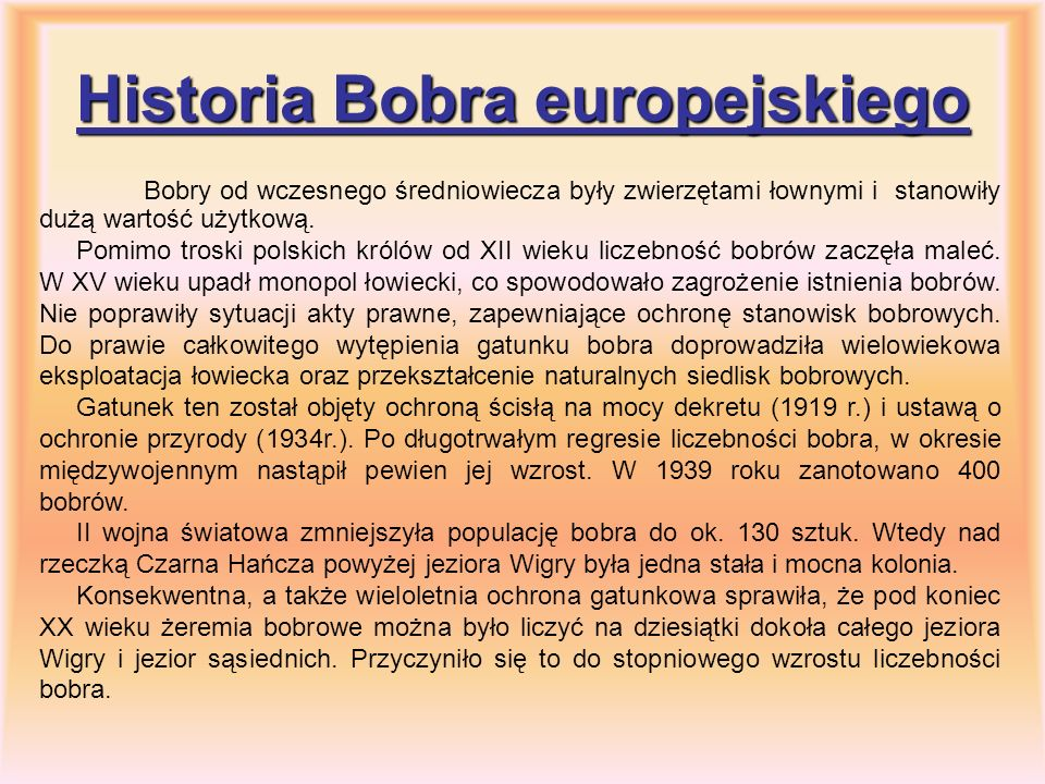 Historia Bobra europejskiego
