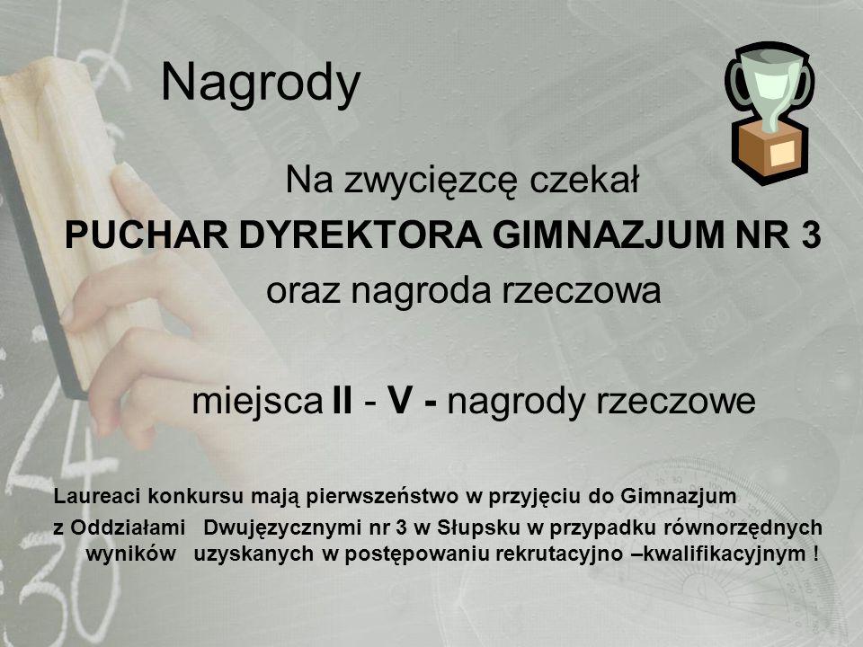 Nagrody Na zwycięzcę czekał PUCHAR DYREKTORA GIMNAZJUM NR 3