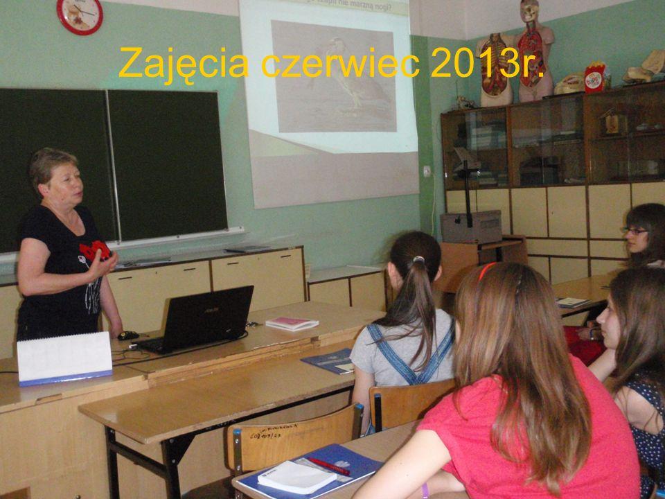 Zajęcia czerwiec 2013r.