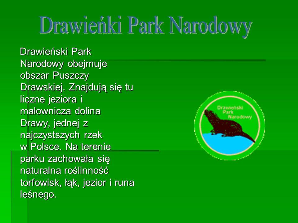 Drawieńki Park Narodowy