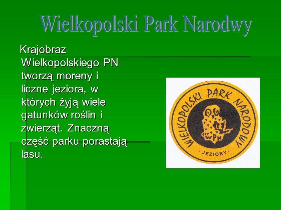 Wielkopolski Park Narodwy