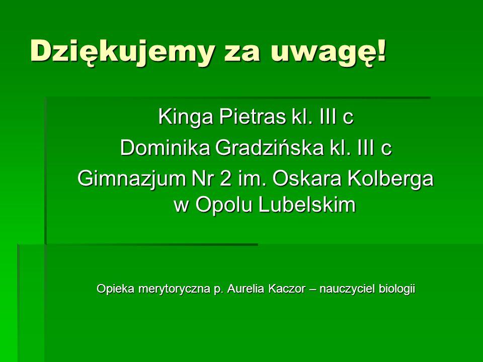 Dziękujemy za uwagę! Kinga Pietras kl. III c