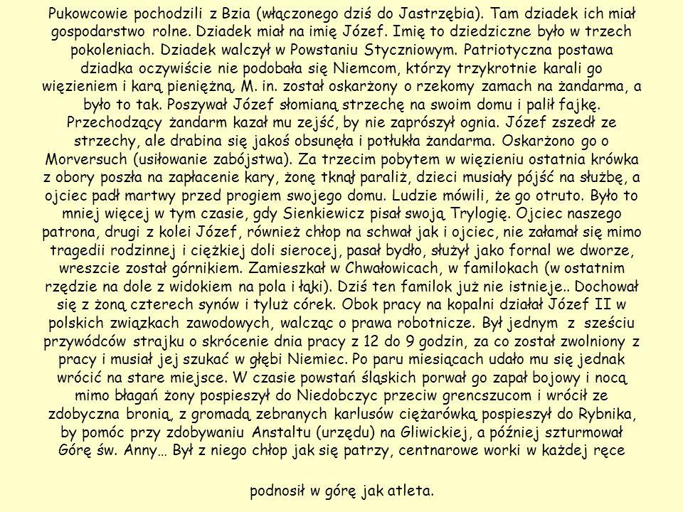 Pukowcowie pochodzili z Bzia (włączonego dziś do Jastrzębia)