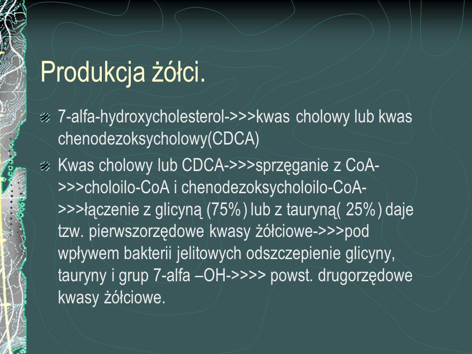 Produkcja żółci. 7-alfa-hydroxycholesterol->>>kwas cholowy lub kwas chenodezoksycholowy(CDCA)
