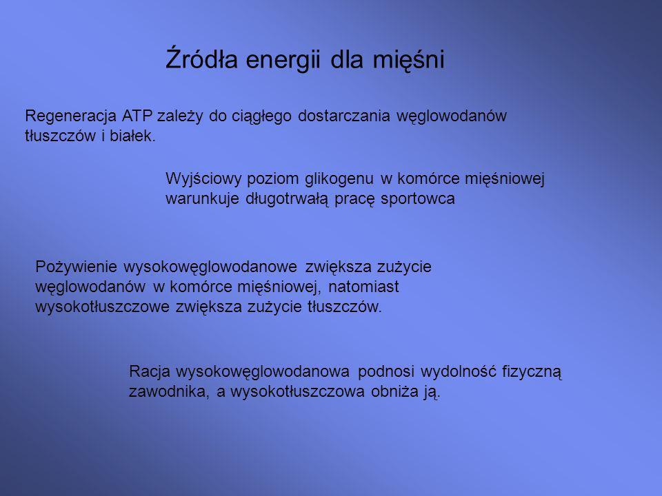 Źródła energii dla mięśni
