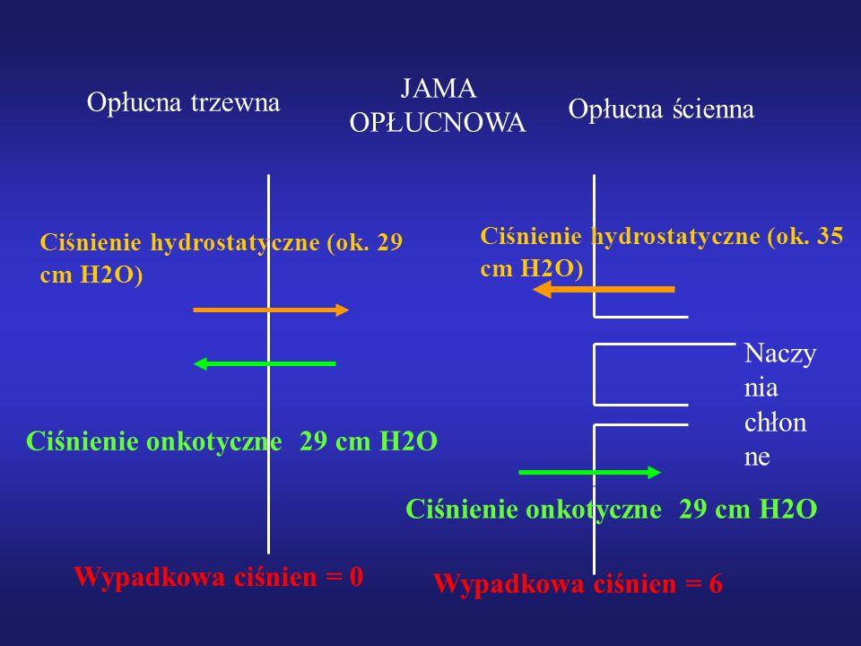 Ciśnienie onkotyczne 29 cm H2O